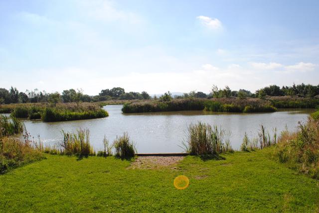 The barrow swim view_1